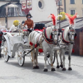 Krakovan hevostaksit